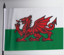 UNITED KINGDOM & IRELAND MEDIUM HAND WAVING FLAGS
